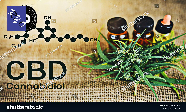 化学式と小ビンと植物