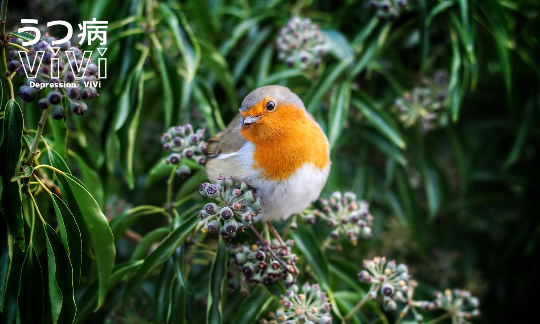 花にとまる小鳥