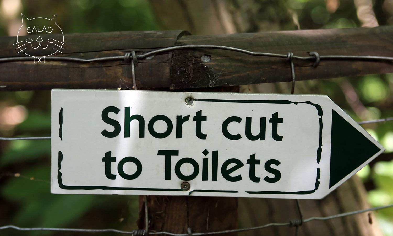 トイレ優先カード