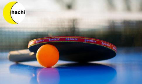 サウンドテーブルテニス